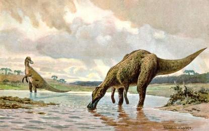 Hadrosaurs.jpg