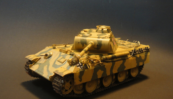2_PantherA.jpg