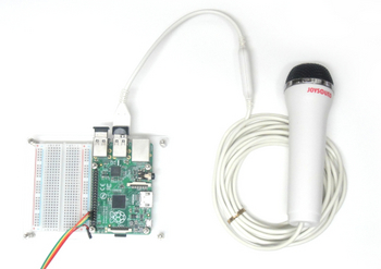 raspberrypi with usb-mic.jpg