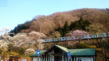 7_chichibu.JPG